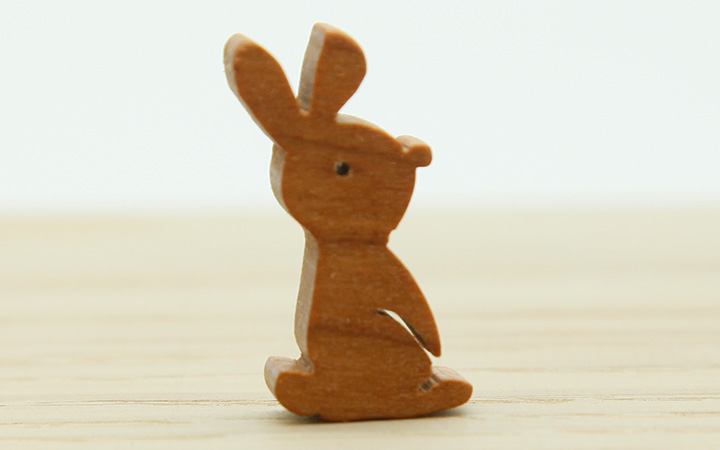 anm-rabbit