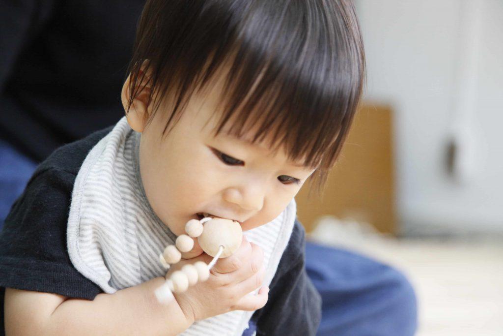 木のおもちゃ arumitoy 赤ちゃん モデル